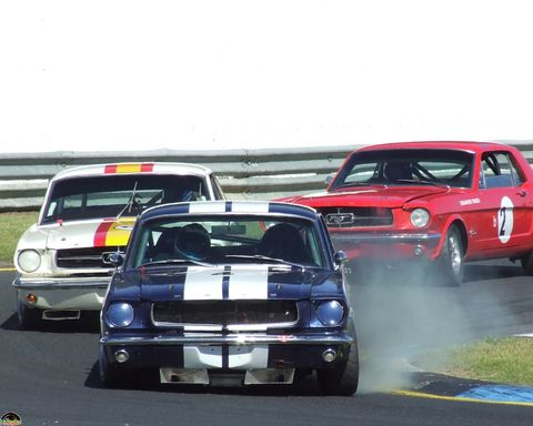 mustangs_at_sandown